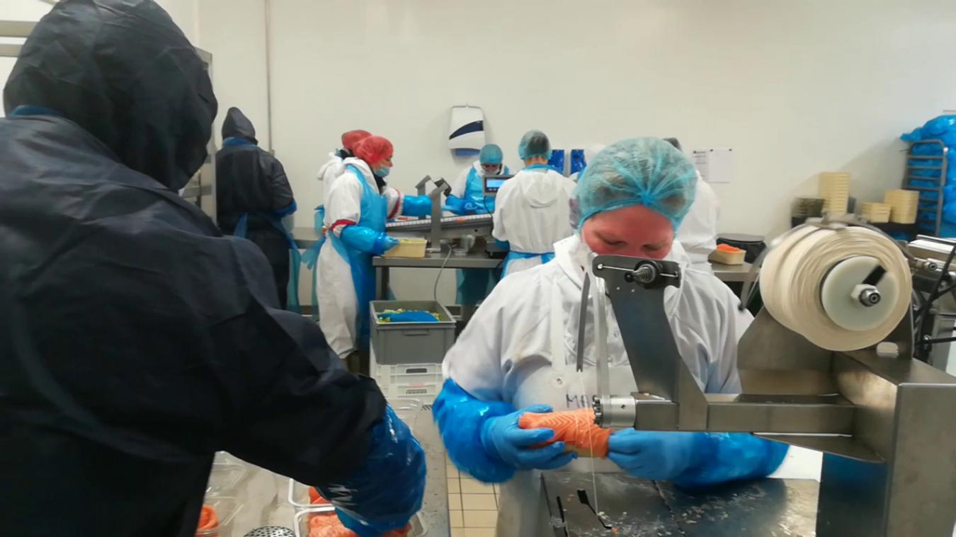 Une opératrice ficelle des morceaux de saumon. Elle porte une charlotte plastifiée, une blouse et des gants épais. D'autres opératices se situent autour d'elle dans l'espace réfrigéré.